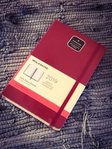 moleskine_diary2019_planning3